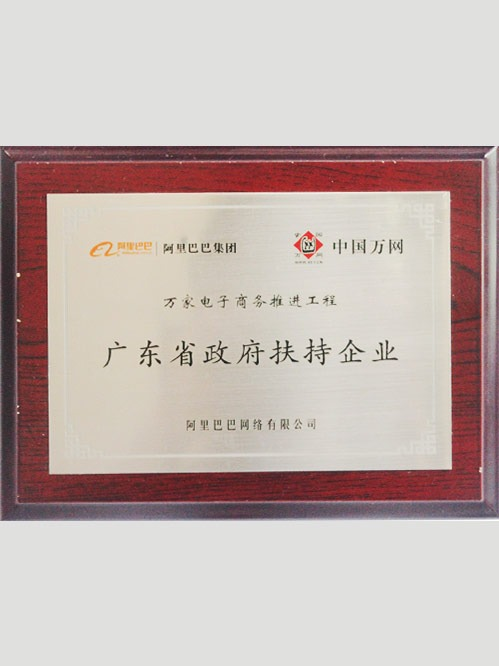 广东省政府扶持企业证书